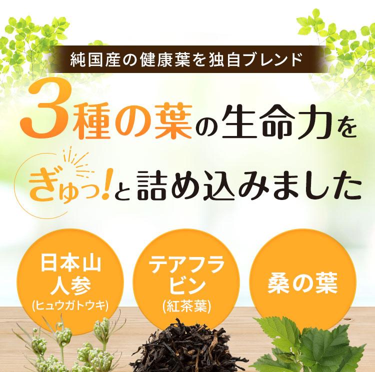 純国産の健康葉を独自ブレンド。3種の葉の生命力をぎゅっと詰め込みました
